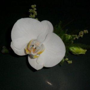 butoniera-s-falenopsis